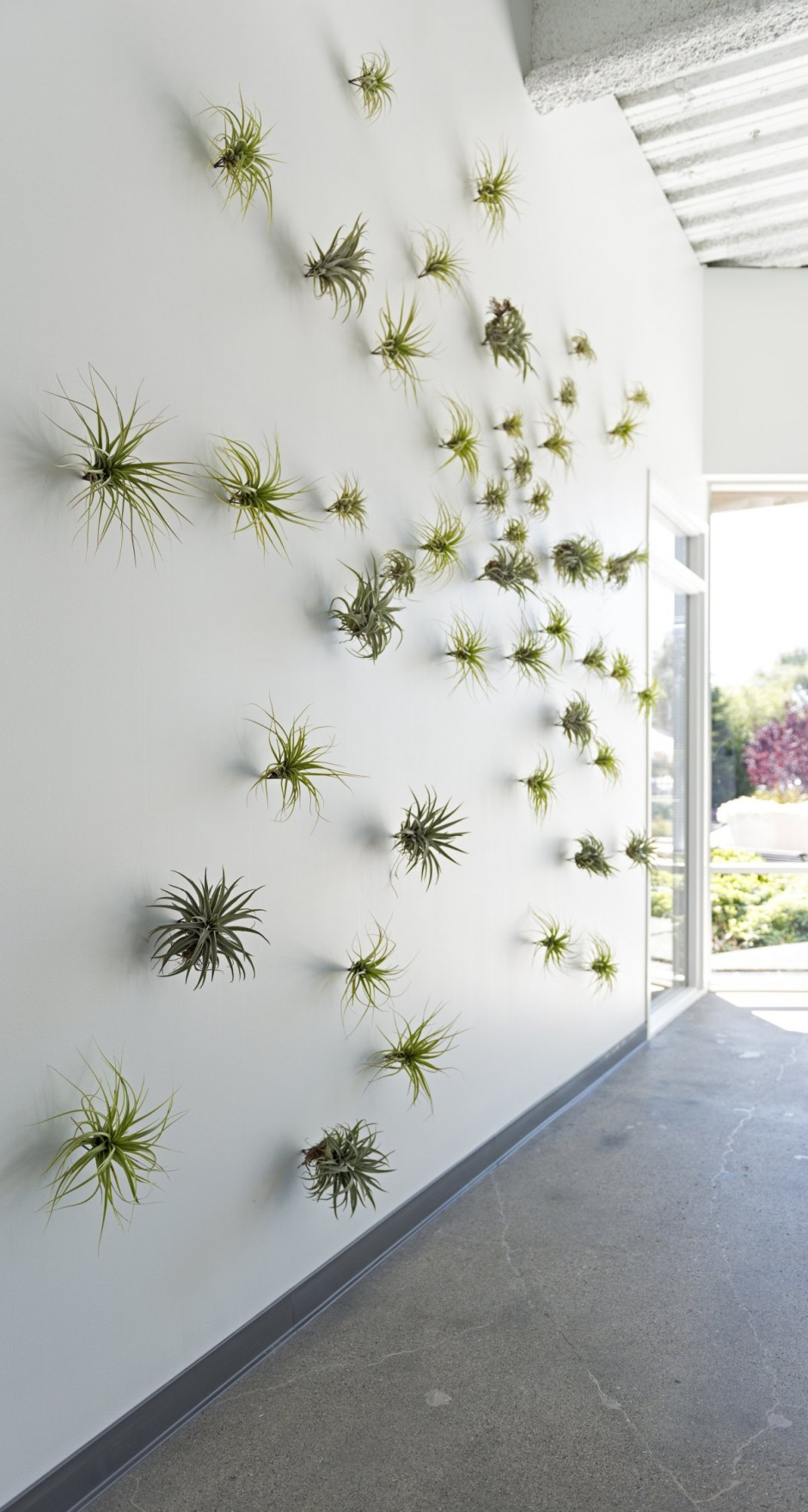 Plant Wall Detail - Evernote office interiors