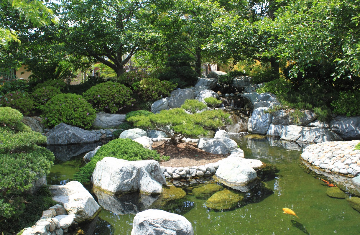 Japanese zen gardens for Outdoor koi pond