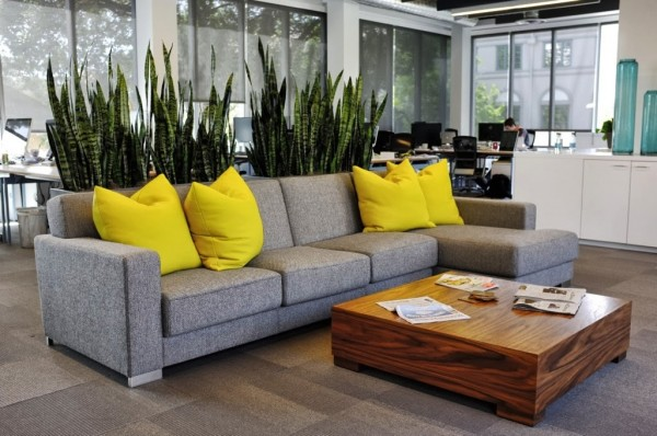 In this modern office space, both plants and furniture divide the area with tall spiky greenery emerging from the back of a low modern couch.