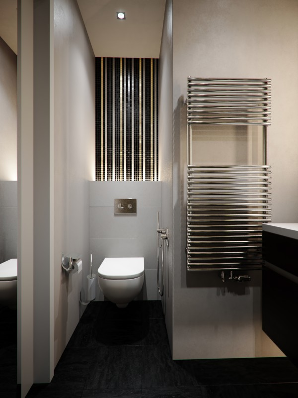 A small apartment with big dreams for Bathroom designs 10 x 12