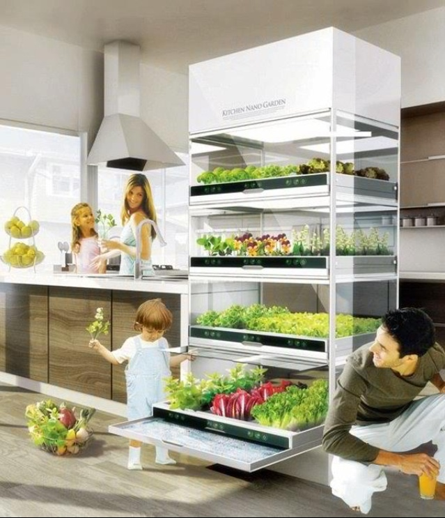 Indoor garden ideas for Indoor vegetable gardening tips