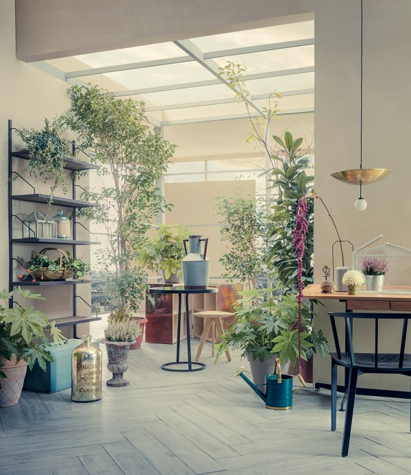 Skylights open up this roof, creating a home situated greenhouse for the houseplants below it.