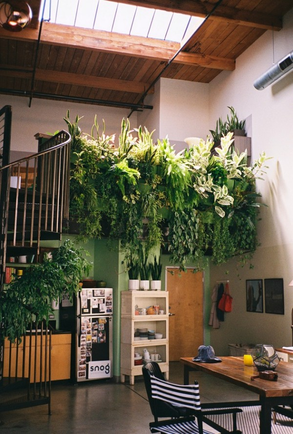 This indoor balcony garden has a cascading mass of greenery that overhangs the space below. This kind of design looks great in an open plan space, over a mezzanine or even as part of a large hallway design.