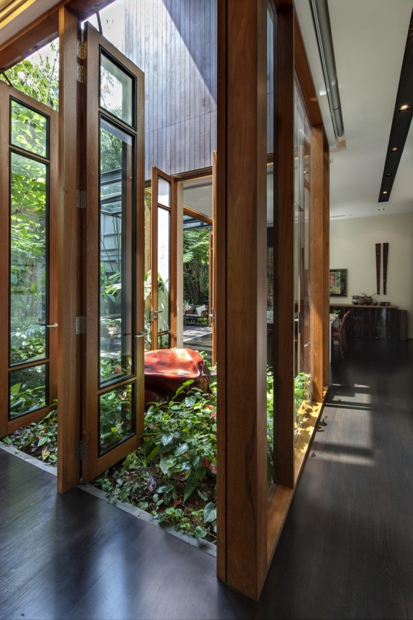 Large glass light wells feature dense carpets of wild planting, where delicate leaves overflow onto the rich wood interior flooring.