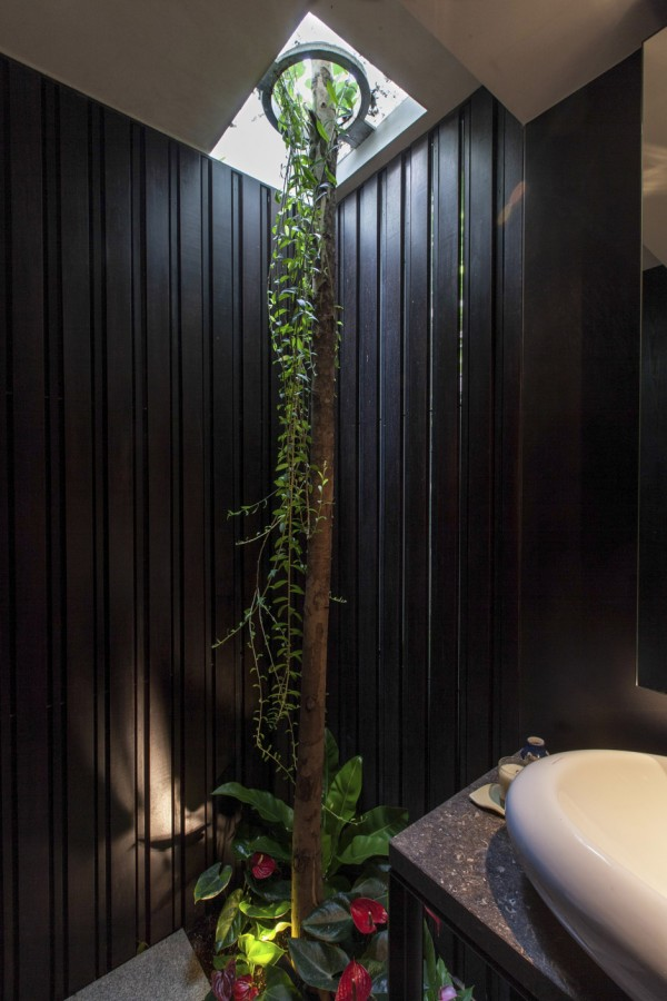In the dramatically dark bathroom scheme, a surprisingly situated slender tree trunk breaks through the ceiling in search of natural sunlight.