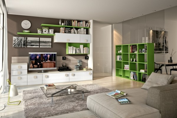 modern living room wall units with storage inspiration,
