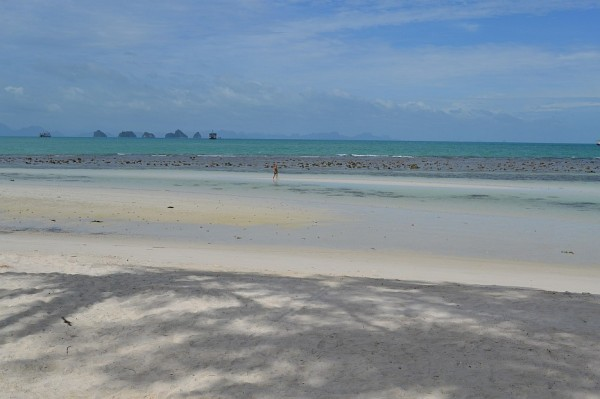A view of the famous 5 islands of the Ang Thong Marine National Park, visible from the beachfront pavilions.