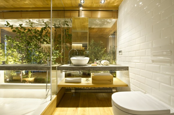 Glass walled bathroom