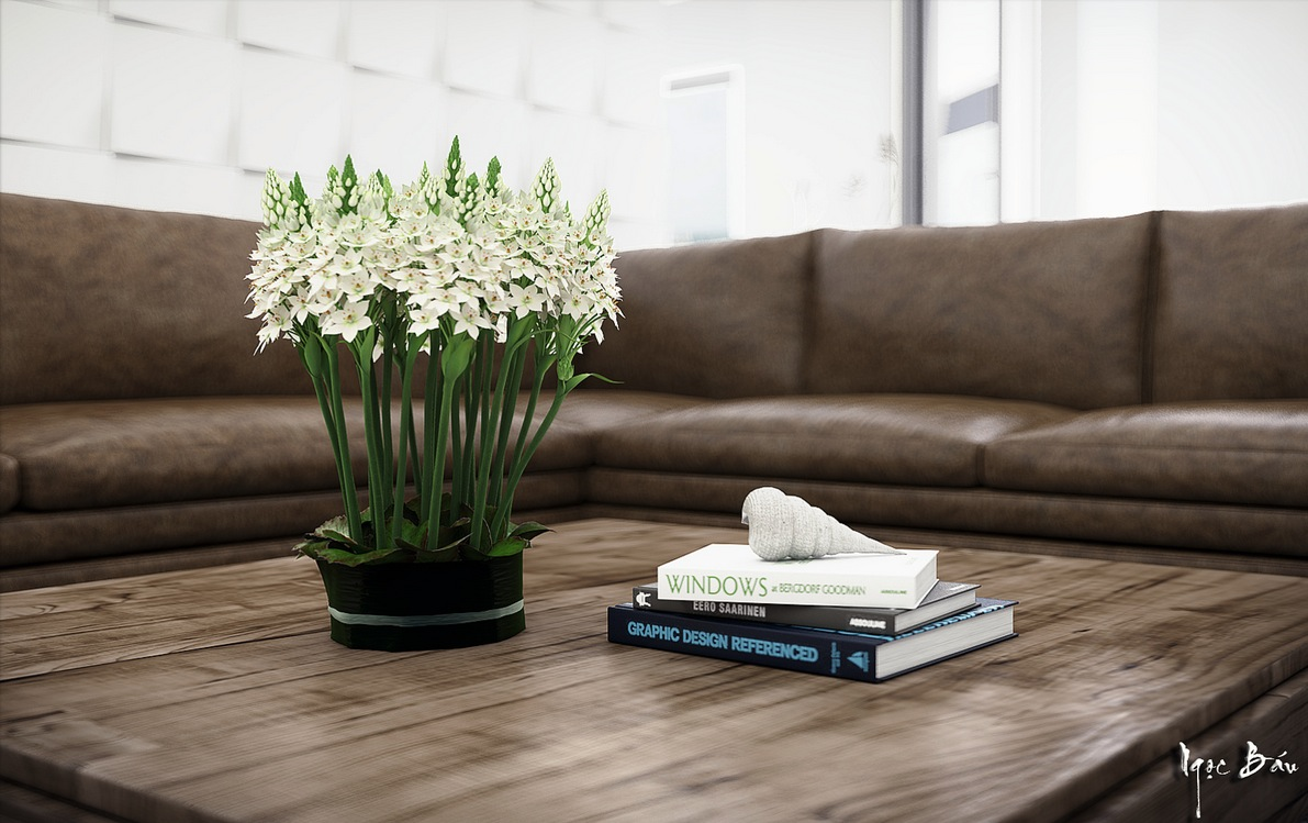 Coffee Table Books - Interiors with natural and rustic accents
