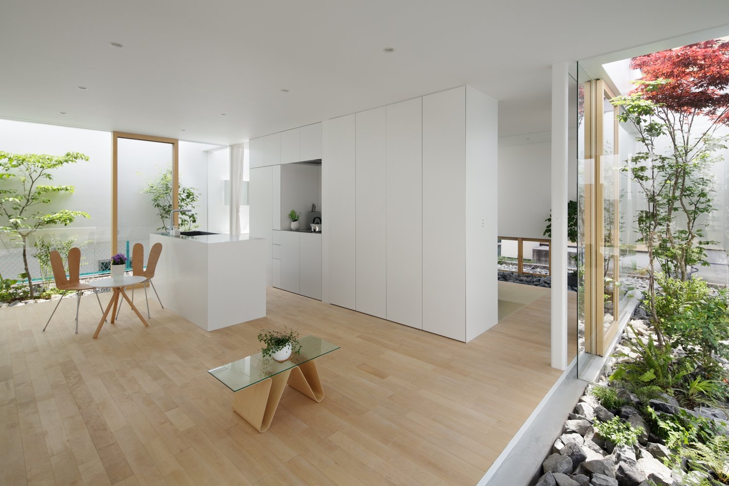An Interior Zen Courtyard Is An Amazing Solution If Space Allows