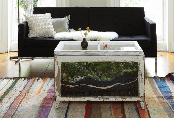 What better way to reconnect with nature than by growing your own terrarium? And what better way to house that terrarium than in your coffee table? Guests will be in awe -- you'll never lack for a conversation starter with this in your living room.