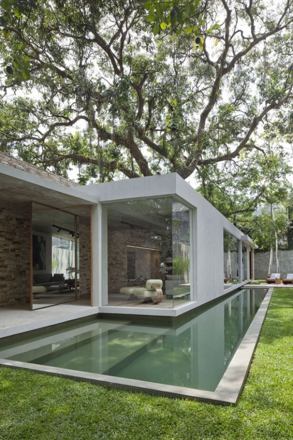 Beautiful brazilian house built up and around a tree for Houses built in trees