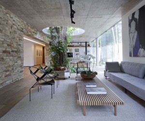 """The large, leafy mango tree that grows up through the middle of the main living area has been named """"Bethany"""" and comes up through a hole in the slab of the floor that is 3 meters in diameter. The tree is not just a clever design element, it influenced how the entire house was arranged, allowing it to provide air, shade, and a sense of flow through the difference living spaces."""