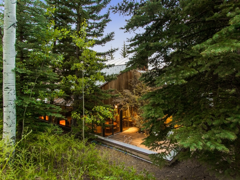Cabin Exterior - Gorgeous colorado cabin secluded among the trees