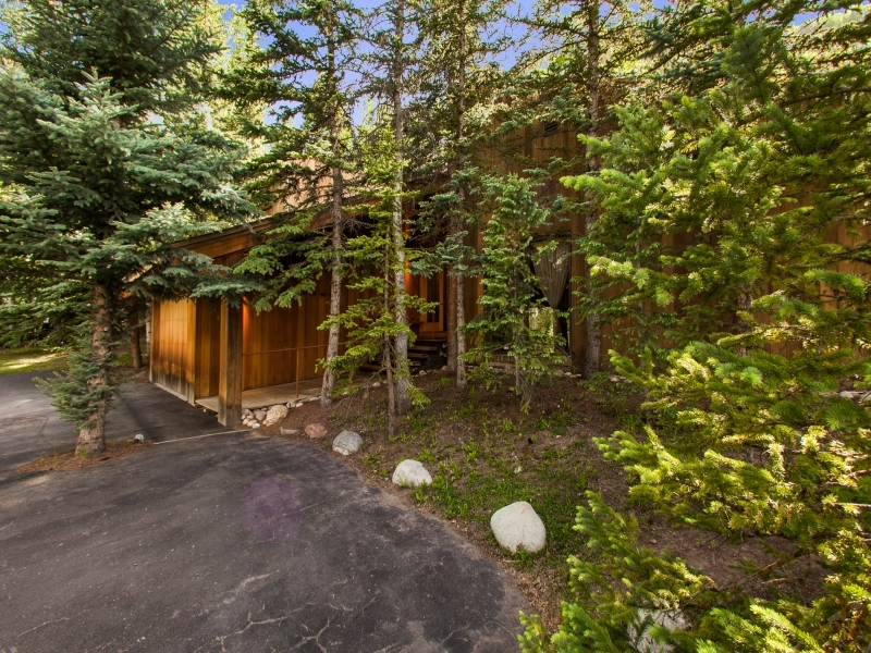 Cabin In The Woods - Gorgeous colorado cabin secluded among the trees