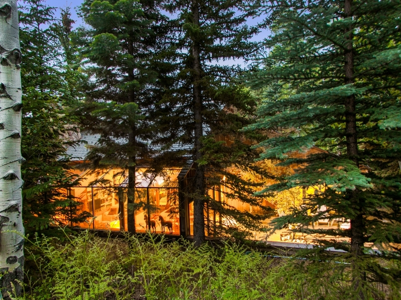 Cabin Sunroom - Gorgeous colorado cabin secluded among the trees