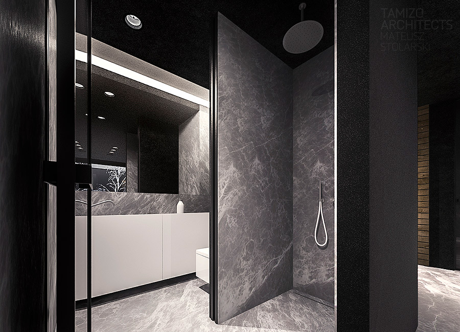 Marble Shower - A single family home interior in cool shades of gray