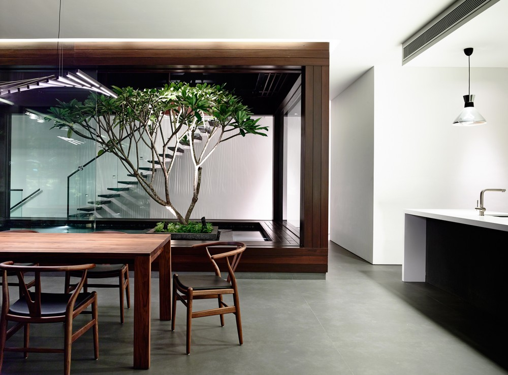 Indoor Tree Ideas - Open tropical home with interior courtyard and wood features
