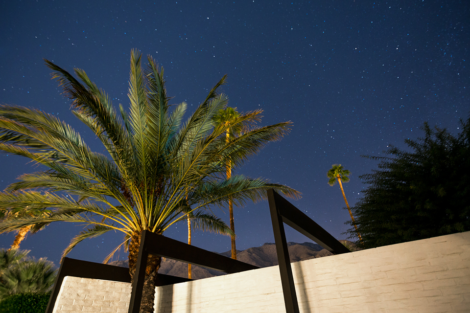 Palm Tree Home - A mid century desert oasis in palm springs