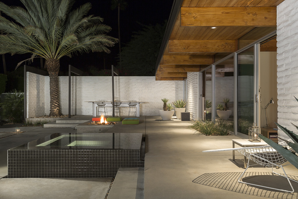 Patio Palm Tree - A mid century desert oasis in palm springs