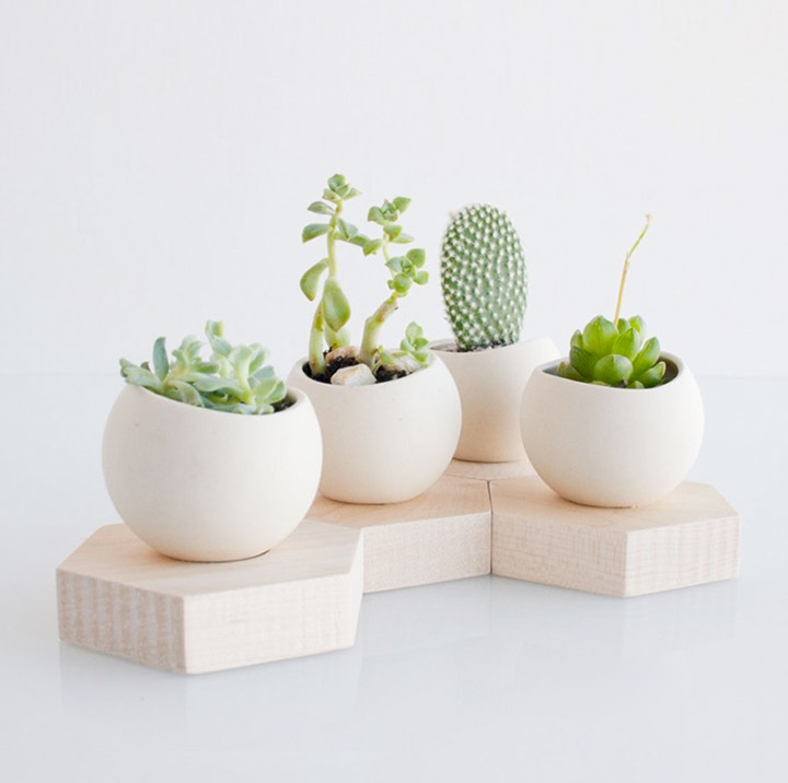 handmade-ceramic-planter | Interior Design Ideas.