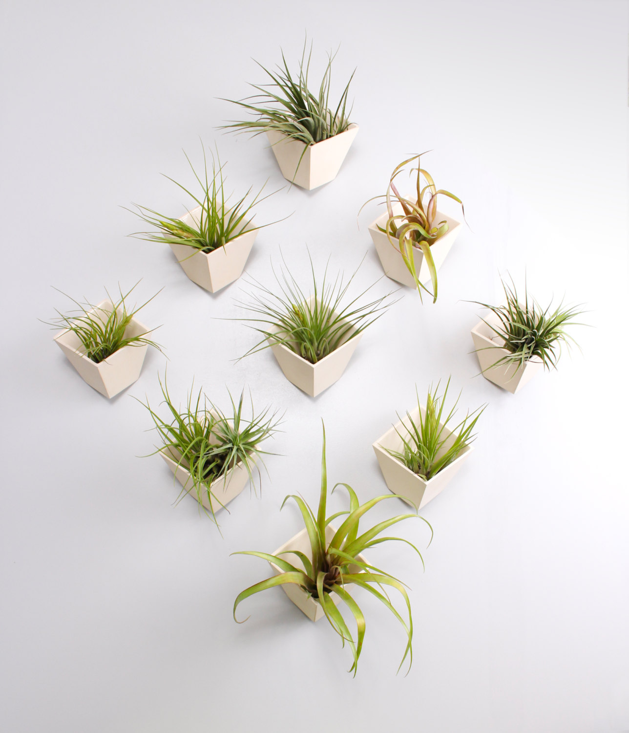 50 unique pots planters you can buy right now for Air plant planters