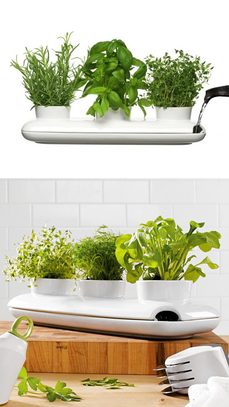 Indoor Herb Planter Beauteous Indoorherbplanter  Interior Design Ideas. Decorating Design
