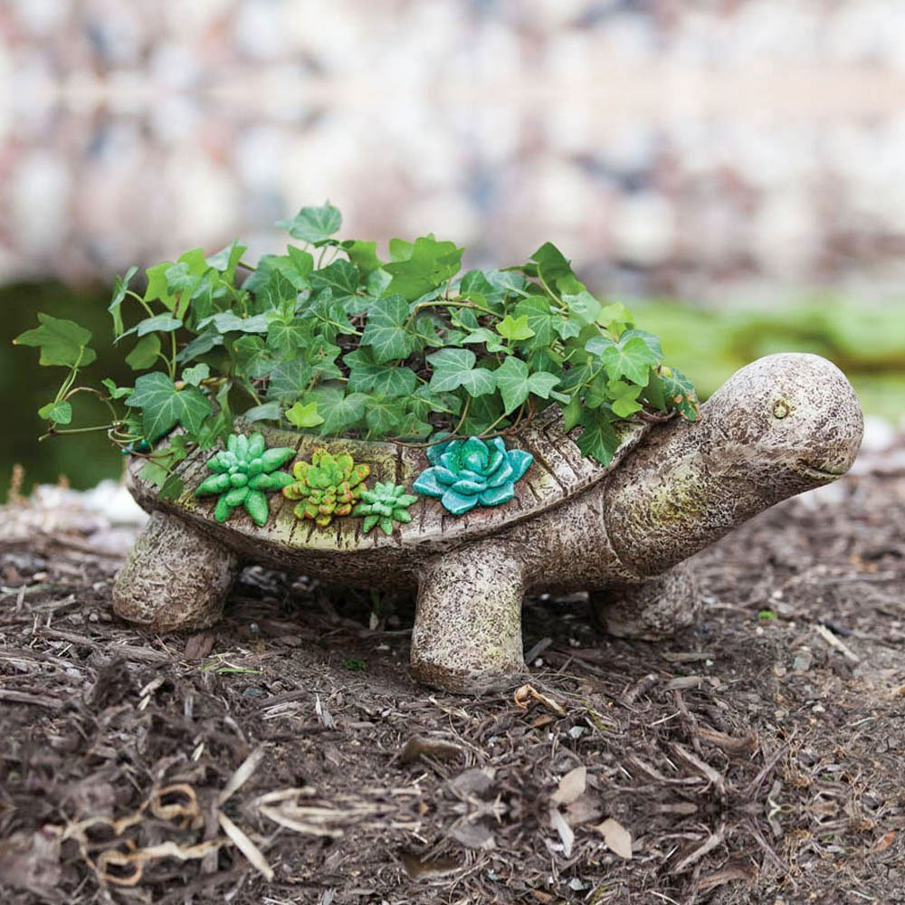 Turtle Planter Interior Design Ideas