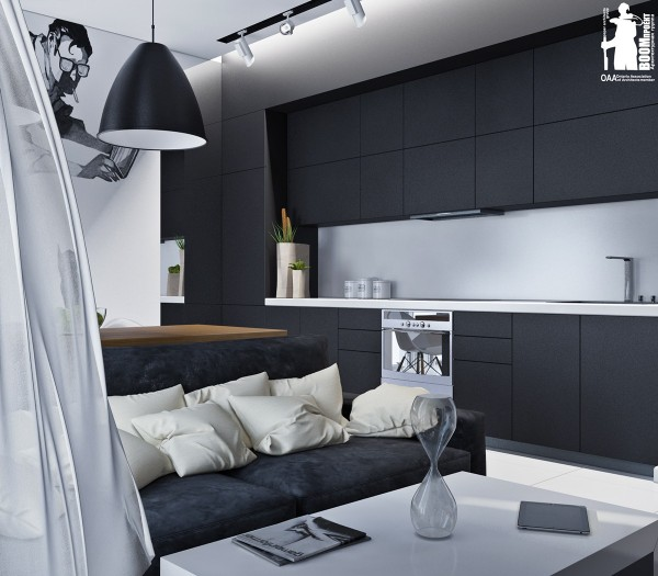 Lovely Monochromatic European Kitchen Design With Gray: Artistic Apartments With Monochromatic Color Schemes