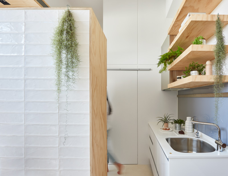 Tillandsia In The Kitchen - An incredibly compact house under 40 square meters that uses natural decor