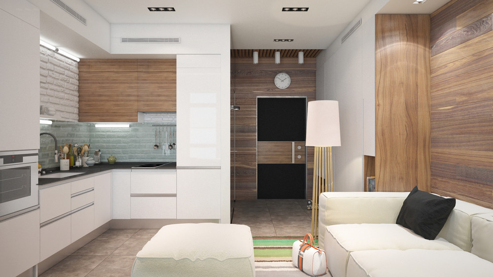 Small Modern Apartment Design - 6 beautiful home designs under 30 square meters with floor plans