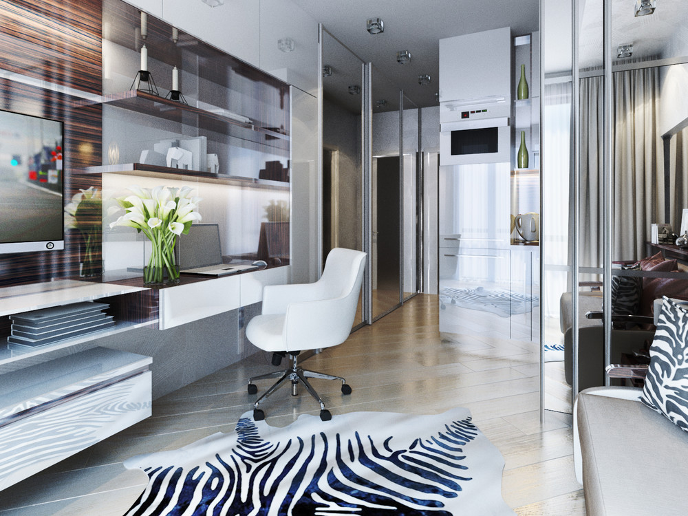 Zebra Office Design - 6 beautiful home designs under 30 square meters with floor plans