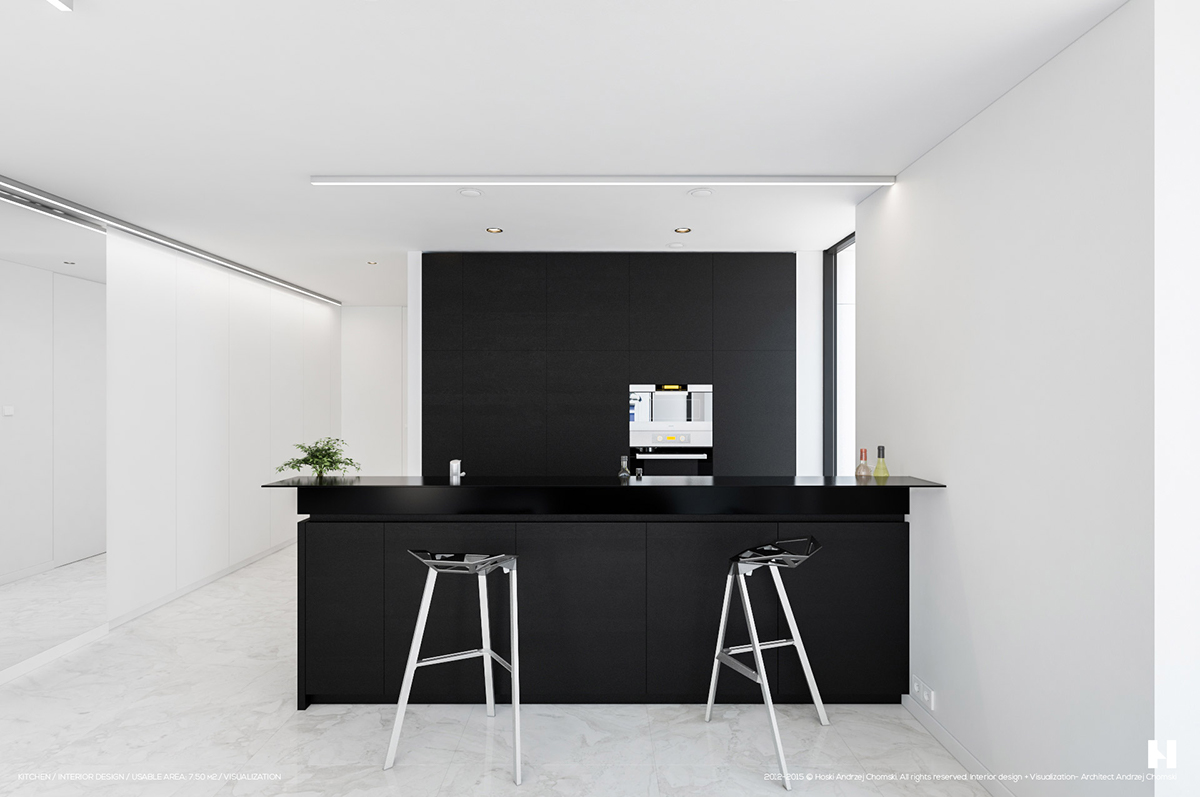 Compact Black And White Kitchen - 6 perfectly minimalistic black and white interiors