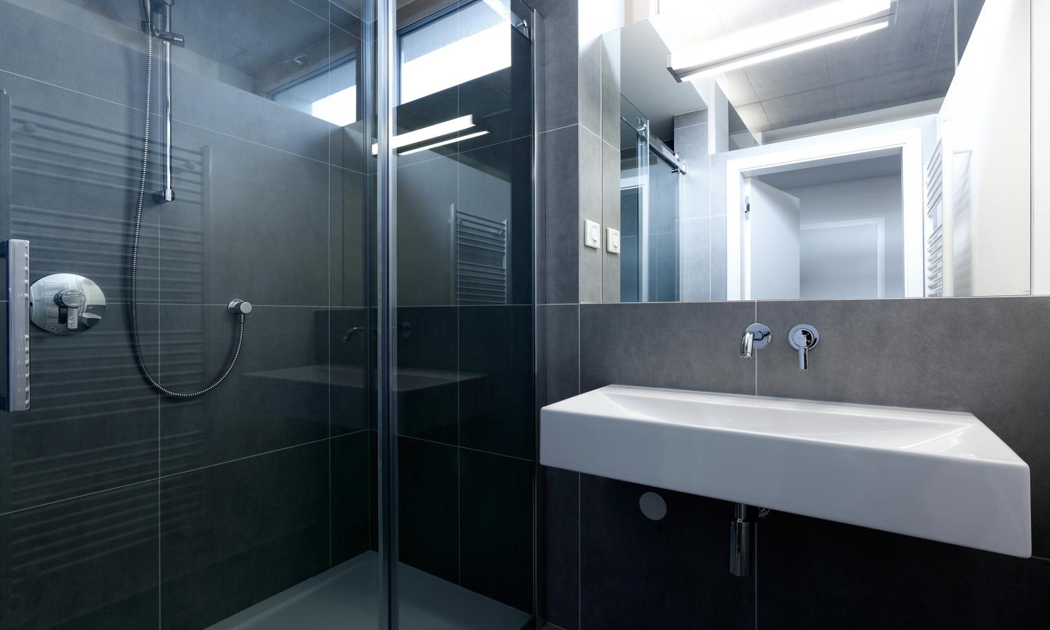 Big Glass Shower - Indoor plant inspiration to transform your space