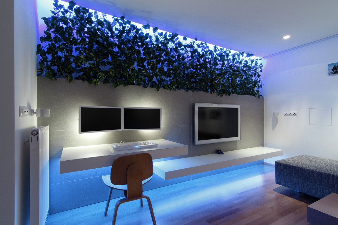 Indoor plant inspiration to transform your space for Tv solutions for living room