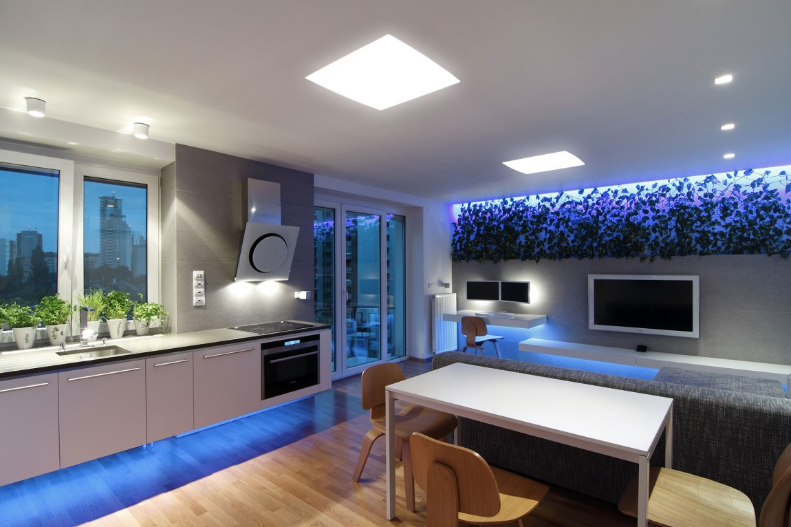 Creative Lighting Solutions Open Kitchen And Living Space - Indoor plant inspiration to transform your space