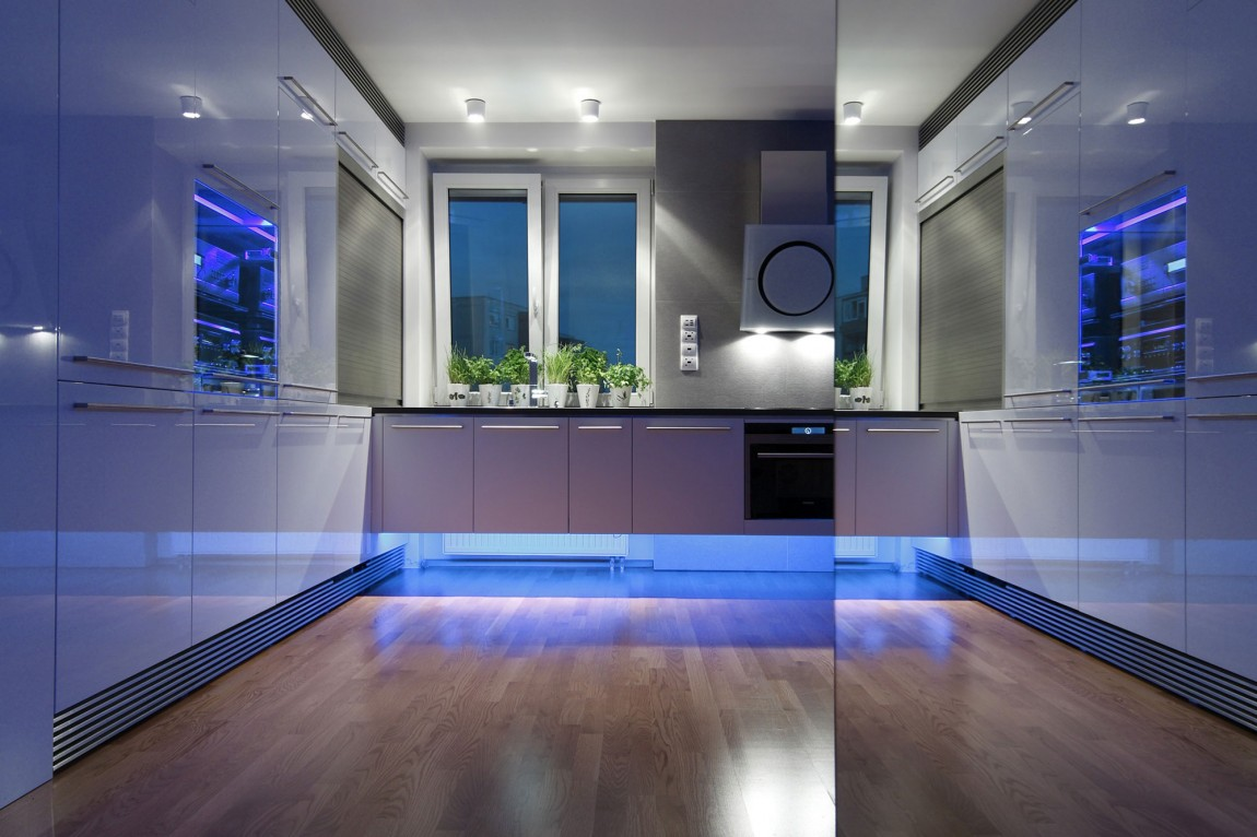 Creative Lighting Solutions For Your Kitchen - Indoor plant inspiration to transform your space