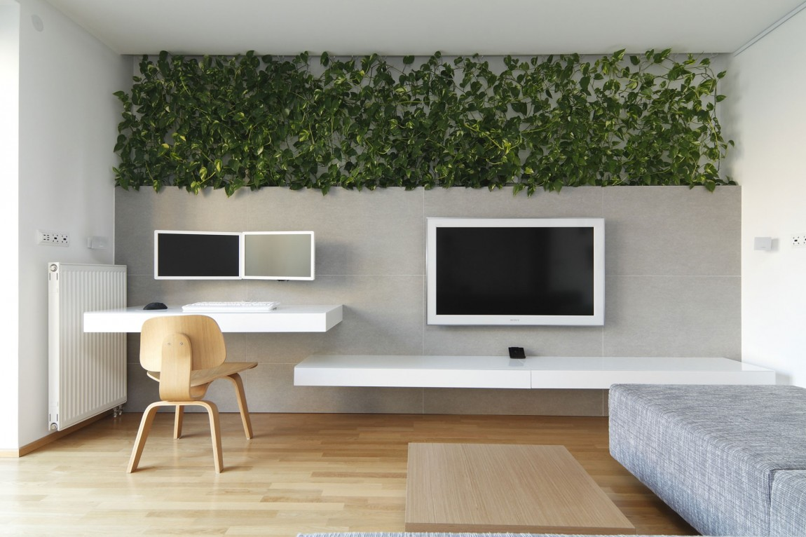 Designer Transforms Space With Indoor Plants