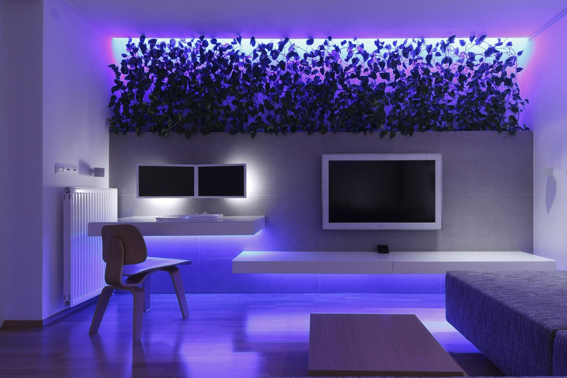 Luxury Apartment Stunning Colored Lighting - Indoor plant inspiration to transform your space