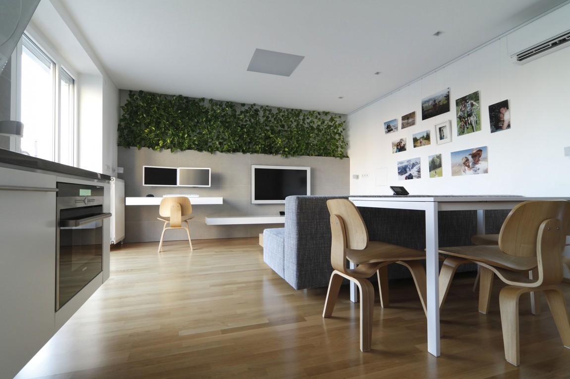 Luxury Design Open Space - Indoor plant inspiration to transform your space