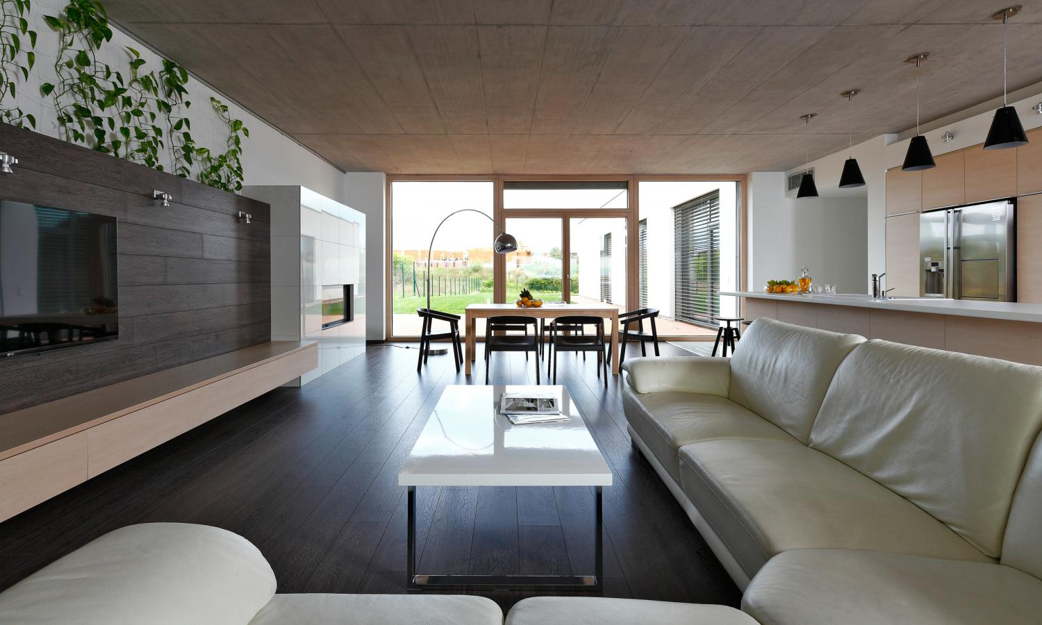 Open Living Room - Indoor plant inspiration to transform your space