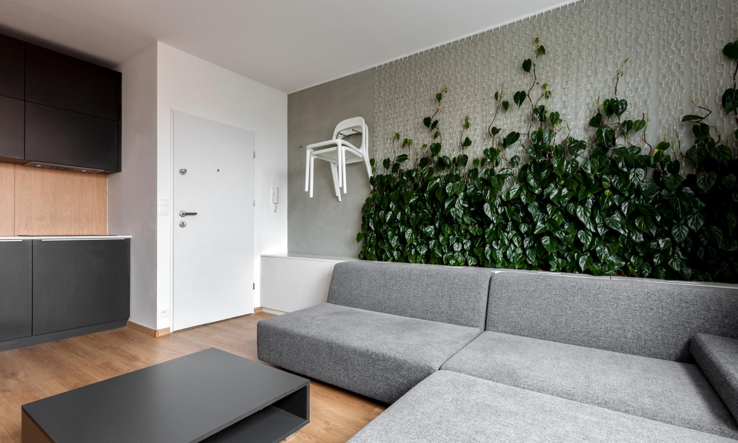 Plants In Your Home Cool