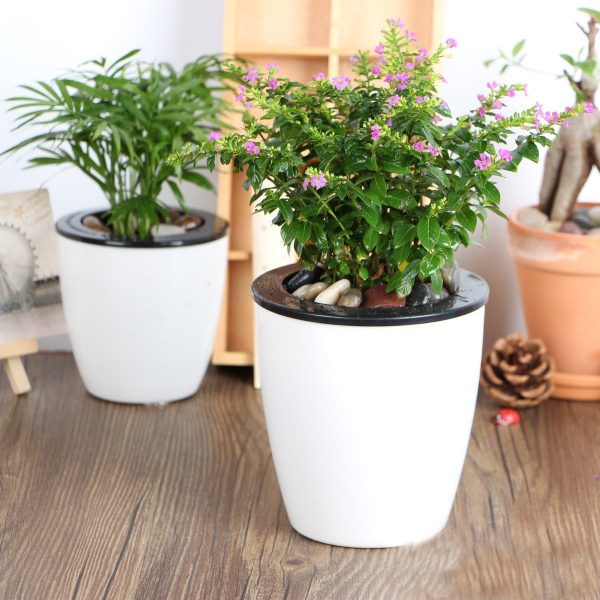 self watering indoor planters