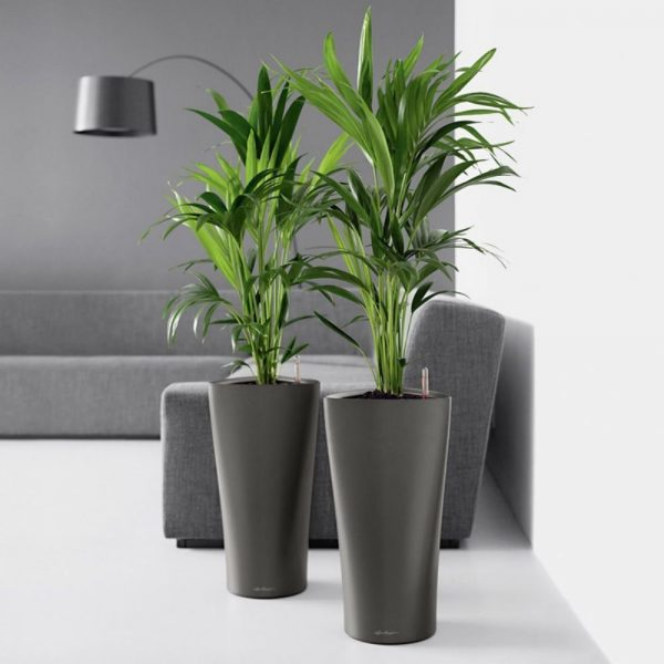 Planters Indoor] The Big List Of Self Watering Planters For ...
