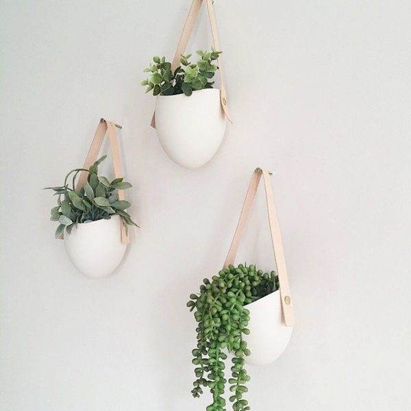 30 Unique Hanging Planters To Help You Go Green Graphic