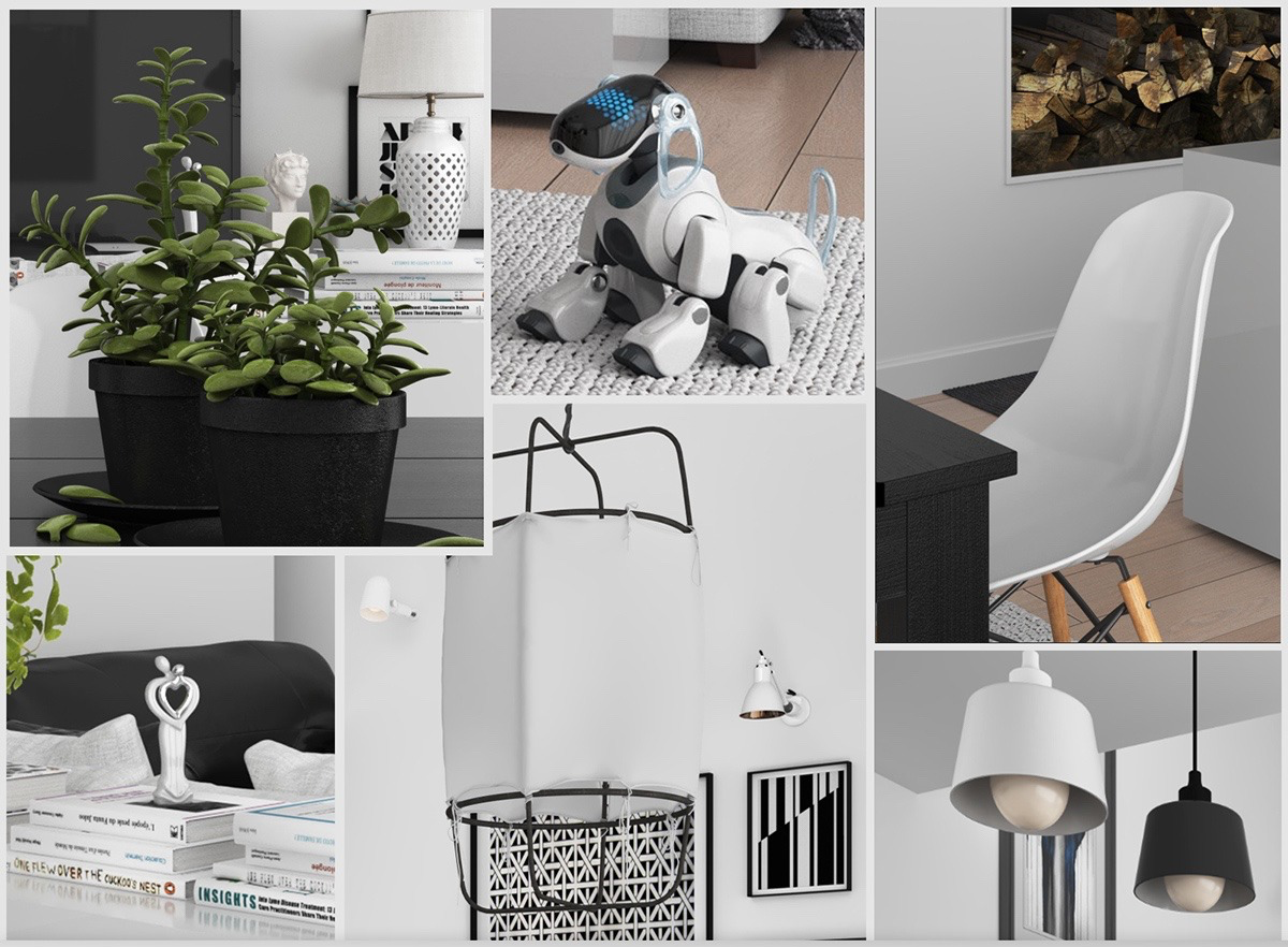 Photo collage monochromatic living space dog character white school chair pot planr