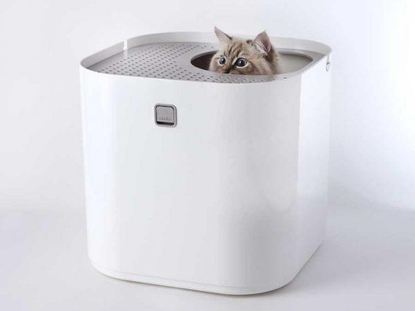 Super stylish cat houses furniture home essentials for the discerning cat lover - Modern kitty litter box ...