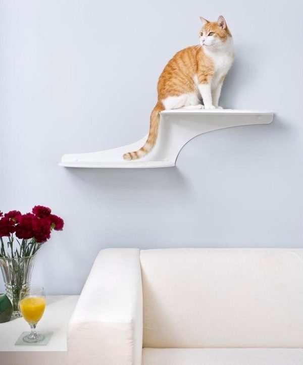 Super Stylish Cat Houses, Furniture U0026 Home Essentials For The Discerning Cat  Lover