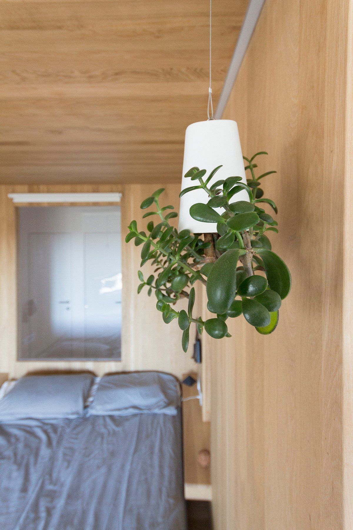 Bedroom Living Light White Cone On Wooden Wall Original Adds Character - Super small studio apartment under 50 square meters includes floor plan