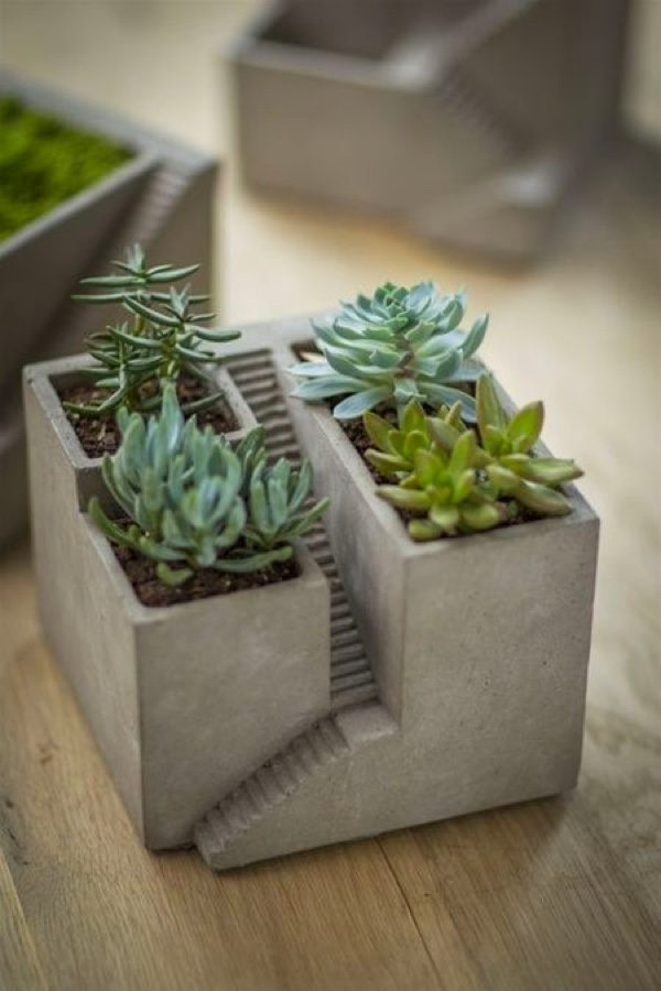 Mini Concrete Planters : Uniquely beautiful concrete planters